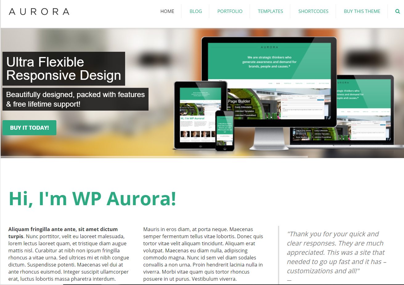 WordPress Startup Business Theme